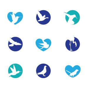 birds illustration, hummingbird, flying duck vector logo design