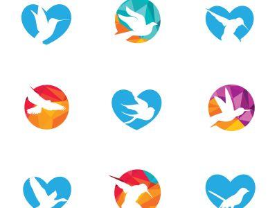 colorful birds illustration, hummingbird, flying duck vector logo design