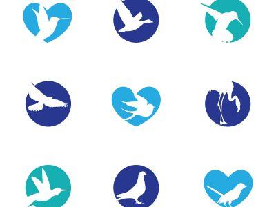 birds illustration, hummingbird, flying duck vector logo design