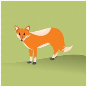 Fox vector illustration cute cartoon with green background.